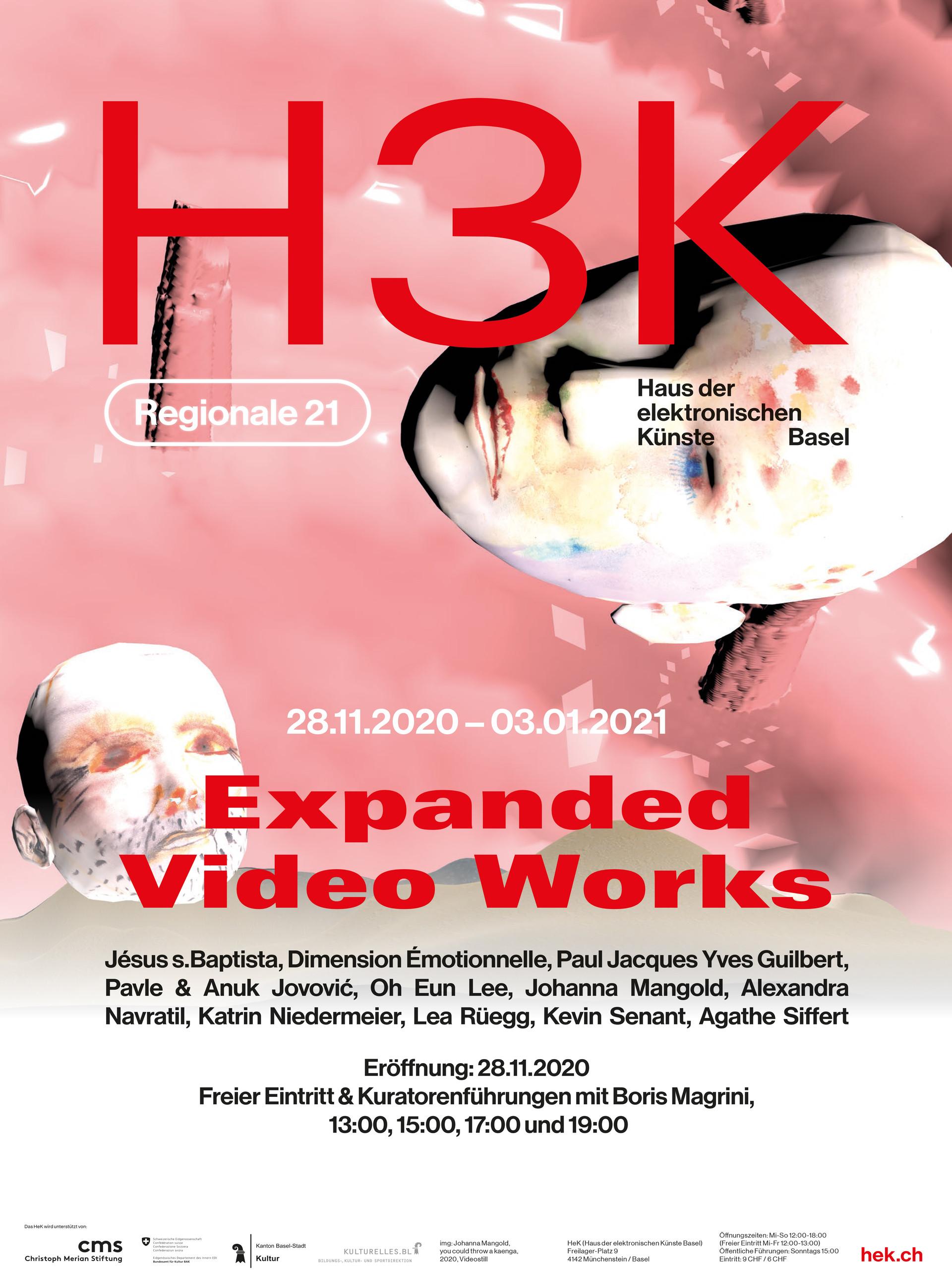 Expanded Video Works HeK Basel