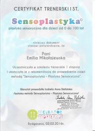 sensoplatyka 2.jpg