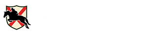 FS Logo Full Horizontal reverse.png