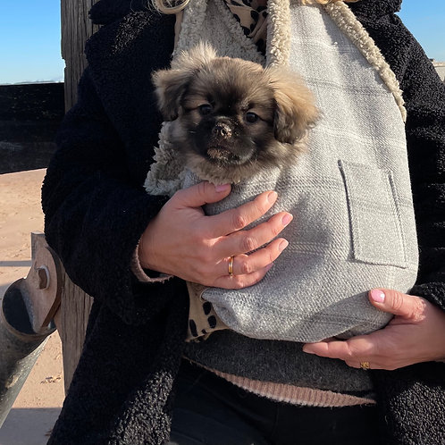 Snuggle and Carry - Luxury Puppy/small dog carrier
