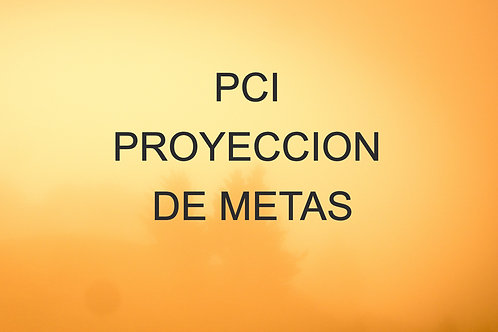 PCI PROYECCION DE METAS