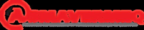 Inspection-vehicules, Jacques-Cartier, Pneus Express de l'Estrie, SAAQ, CAA, ASMAVERMEQ
