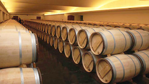 Vinho com e sem barrica: Entenda a influência do carvalho e aprenda a diferenciar os vinhos