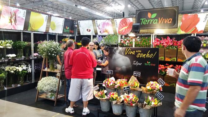 Terra Viva no 17º Veiling Market