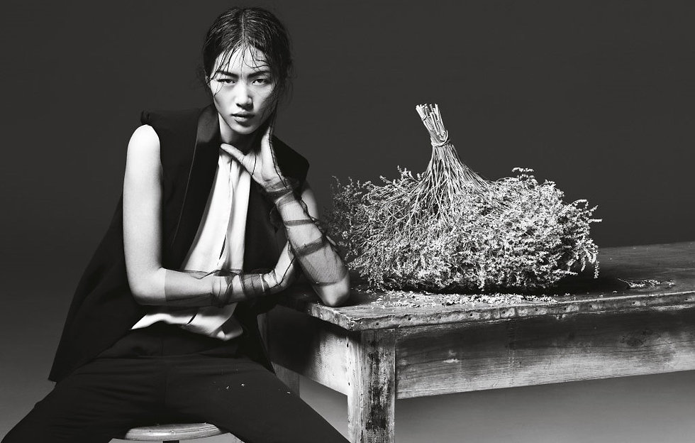 1528028053_liu_wen_photo__427644_celebs-