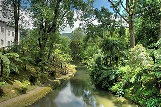 Azores-Gardens-12.jpg