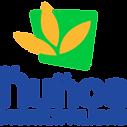 logo_nunoa.png