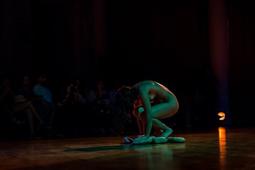 El Salon: Danza Contemporánea
