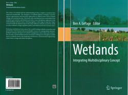 Wetlandsa.jpg