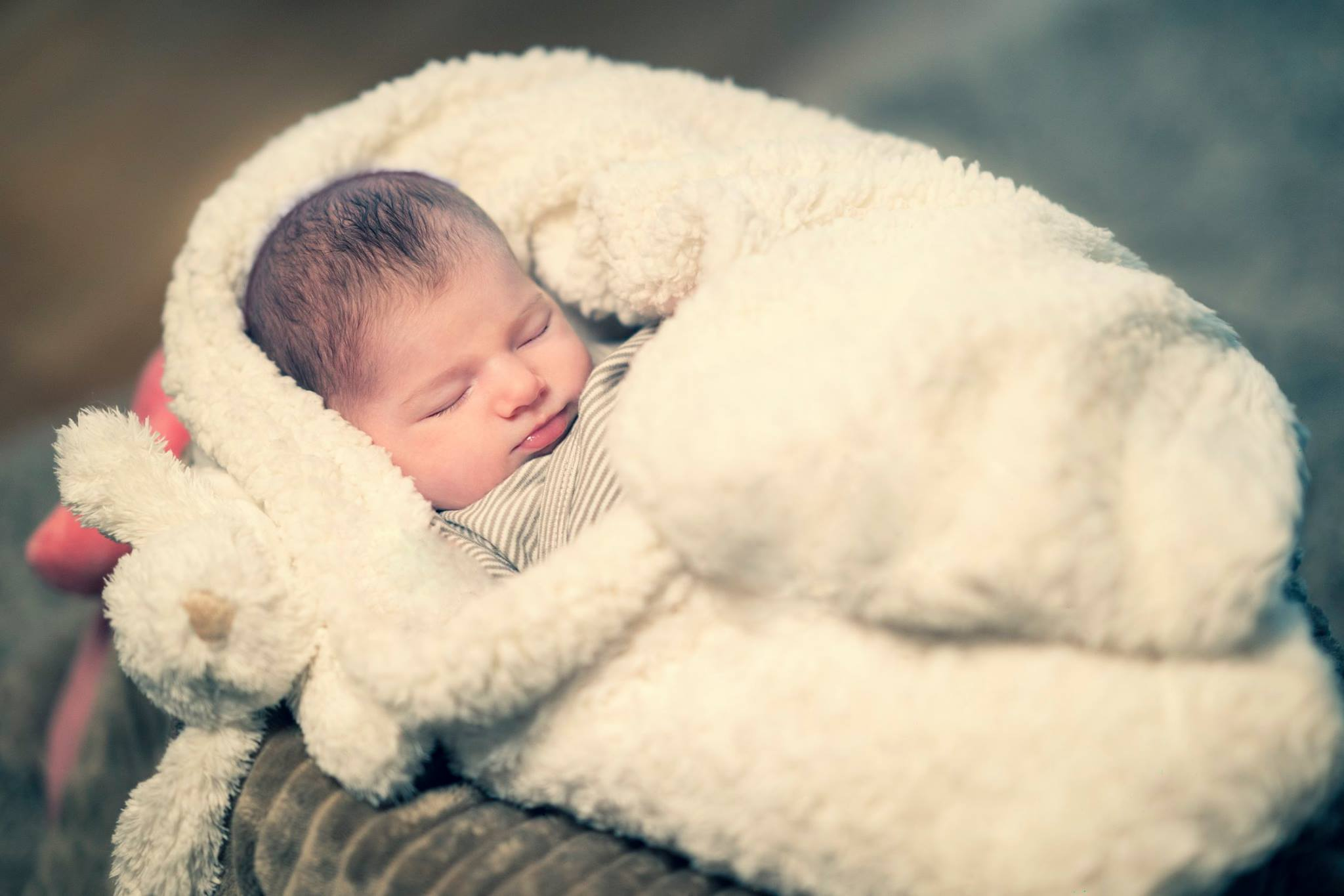 Portrait nouveau-né
