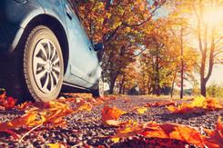 가을철 차량관리 요령