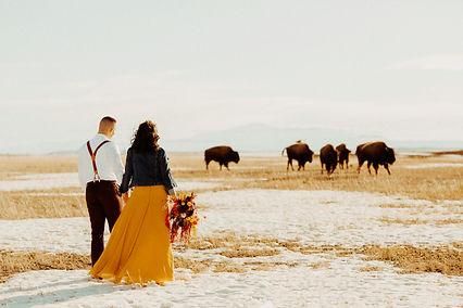 White-Willow-Barn-Elbert-Colorado-Spring