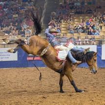 Roughstock Rodeo Gear