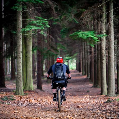 Ninja Mountain Bike Performance