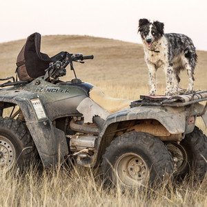 TOP ITEMS TO KEEP ON YOUR ATV
