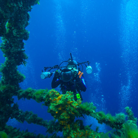 NIGHT DIVING TIPS