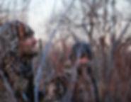 rhett-noonan-172575-unsplash.jpg