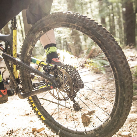 Basic Mountain Biking Techniques