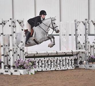Gryffindor's Hidden Magic, medium green pony hunter qualified for pony finals