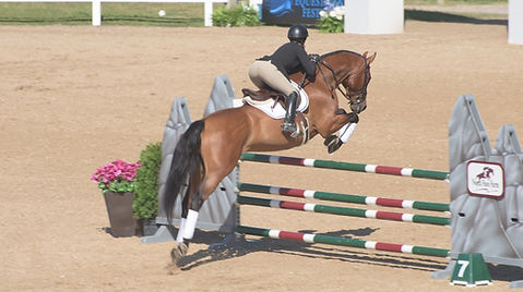 trainer T'Neil Guerrero-Wise & Ashland - 1.20m Jumpers, Great Lakes Equestrian Festival GLEF 2017