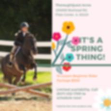new beginner horseback rider package