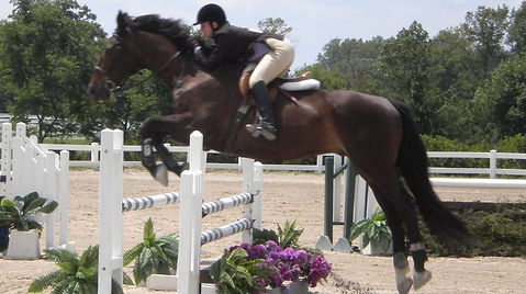 Sidonie Maltzman & Waves of Glory - Illusion Farm Jumper Derby
