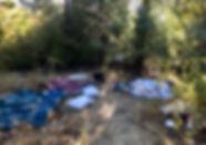 Manzanita-10.8_edited.jpg