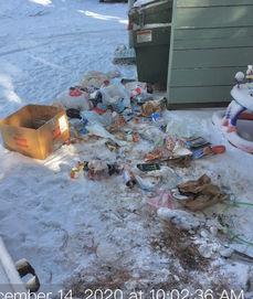 Dumpster Mess.jpg