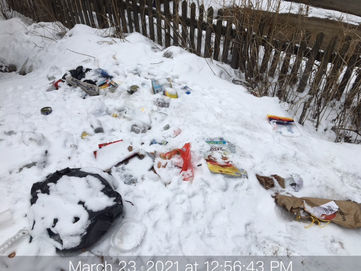Trashy Photo snow.JPG