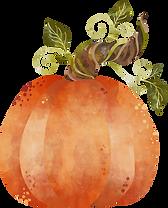 pumpkin-7.png