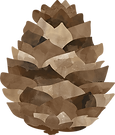 pinecone-2.png