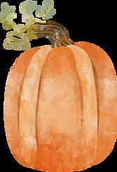 pumpkin-2 (2).png