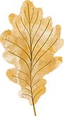 leaf-2 (2).png