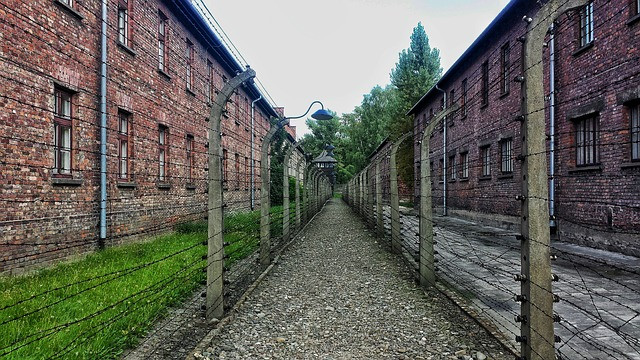 Photo of prison camp- couresy of www.pixabay.com