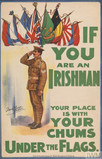 Irish in the British Army : soldiers' records online and free at the National Army Museum