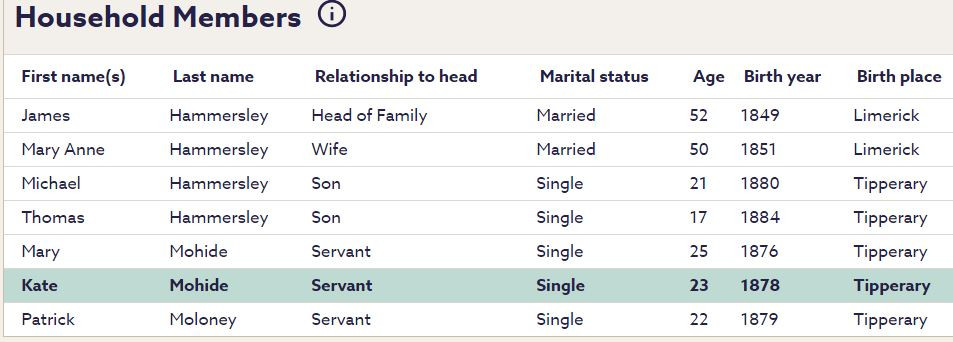 Extract from the 1901 Irish Census. Courtesy of www.findmypast.com.au