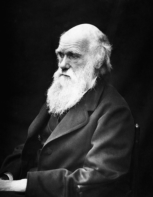 Photo of Charles Darwin, famous naturalist and author. Courtesy of www.wix.com