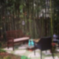 Bamboo Garden 1.JPG