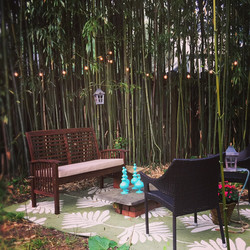 Bamboo Garden 1