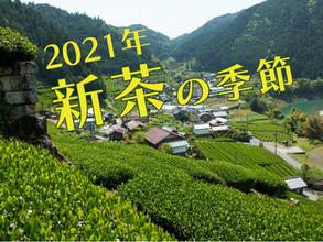 新茶の季節