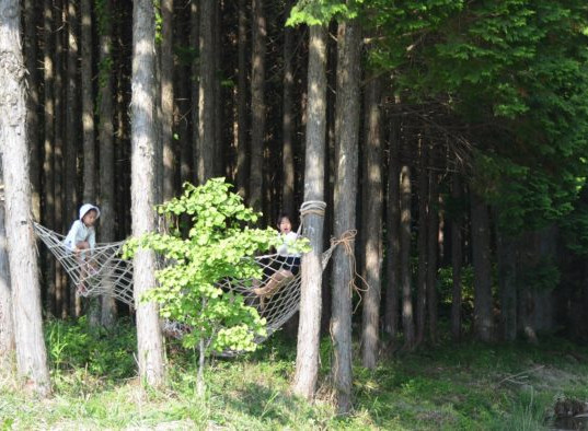 森の遊園地