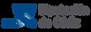 logo_dipucaidz.png