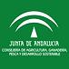 junta andalucia.png
