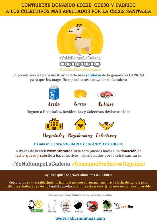 CartelCampana.jpg