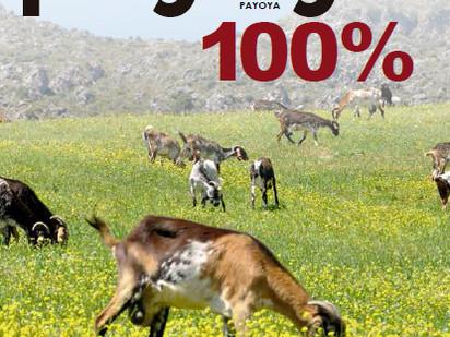 Payoya 100%,  es cuestión de Raza