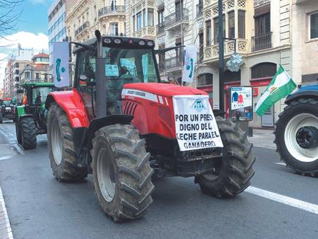 El sector vacuno andaluz denuncia la situación crítica de las explotaciones lecheras de Andalucía