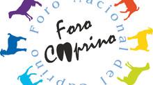 El XI Foro Nacional del Caprino se aplaza a 2021
