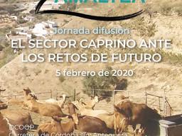 """Jornada de difusión """"el Sector Caprino ante los retos de Futuro"""""""