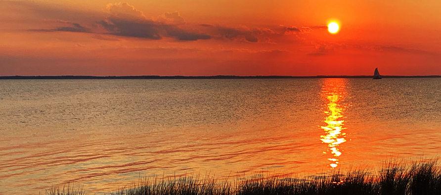 Duck-sunset.jpg