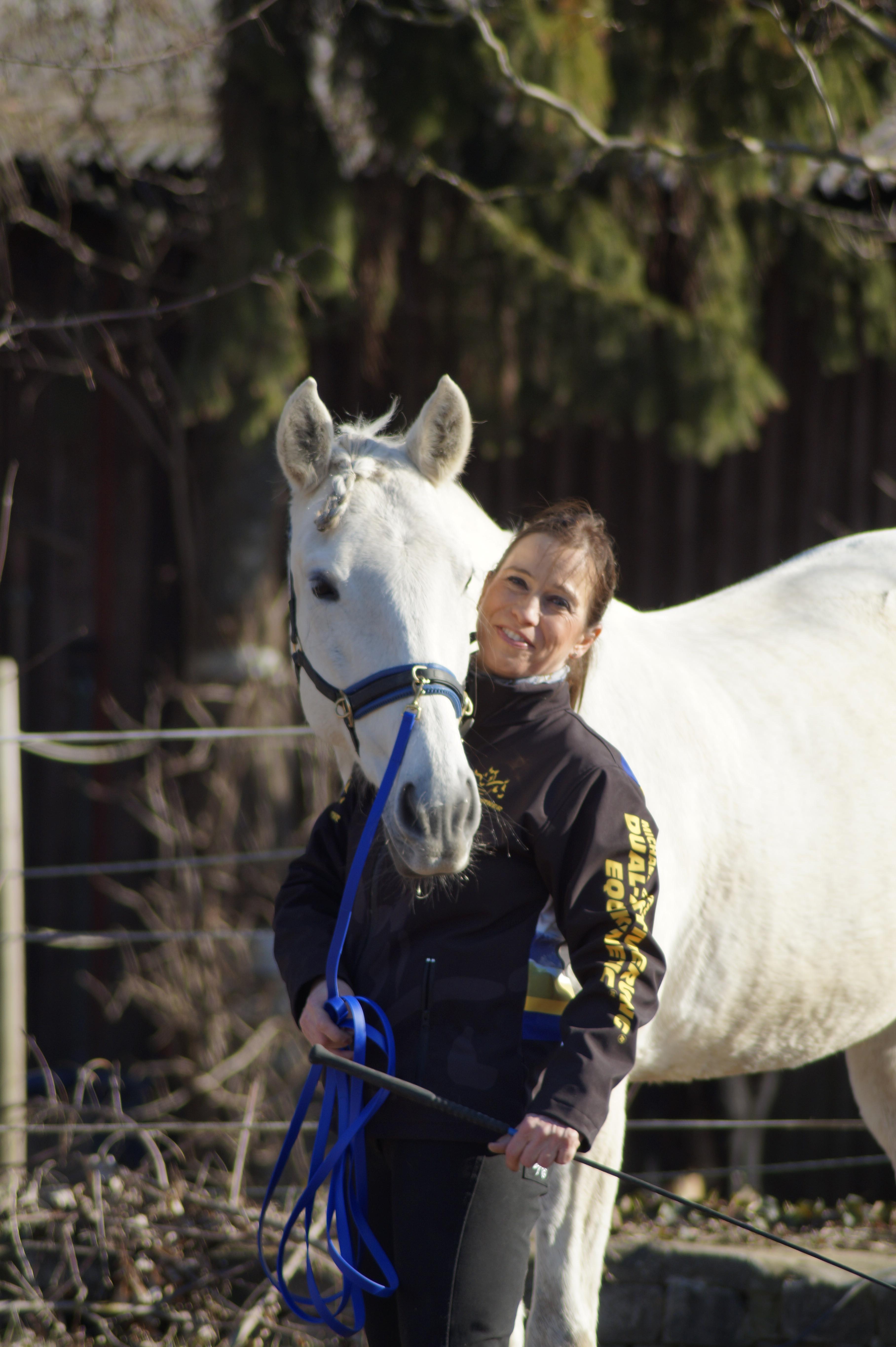 Pferdetraining EquiDual